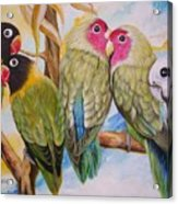 Flygende Lammet     Productions          5 Lovebirds Sitting On A Twig Acrylic Print