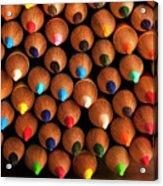 Multicolored Pencils  Acrylic Print