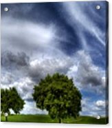 Nature By Acrylic Print