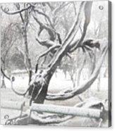 Park During Heavy Snowfall  Acrylic Print