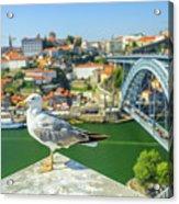 Porto Skyline Seagull Acrylic Print