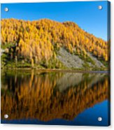 Reflections On Water, Autumn Panorama From Mountain Lake Acrylic Print