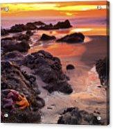 5 Star Sunset Acrylic Print