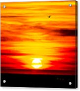 Sunset Bay Beach Acrylic Print
