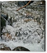 Wild Basin White Water Acrylic Print by Brent Parks