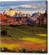 Zion National Park Utah Acrylic Print by Utah Images