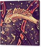 Koi Fish Acrylic Print