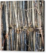 50 Shades Of Trees Acrylic Print