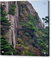 5782- Yellow Mountains Acrylic Print