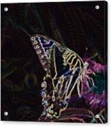 5859 3 Acrylic Print