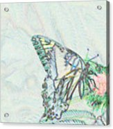 5859 4 Acrylic Print
