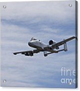 A U.s. Air Force A-10 Thunderbolt II Acrylic Print