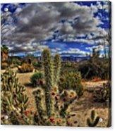 Anza-borrego Desert State Park Acrylic Print