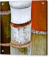 Bamboo Palm Acrylic Print