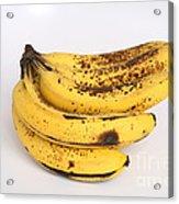 Banana Ripening Sequence Acrylic Print