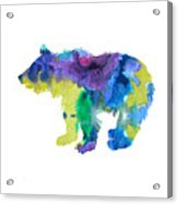 Bear Cub Acrylic Print