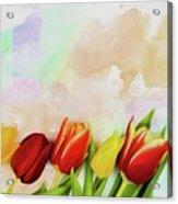 Flower Frame Border Acrylic Print