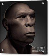 Homo Erectus Acrylic Print