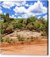 Landscape In Tanzania Acrylic Print