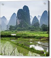 The Beautiful Karst Rural Scenery In Spring Acrylic Print