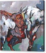 The Bulls Acrylic Print