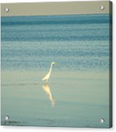Tranquil Nature In Florida Keys Acrylic Print
