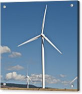 Wind Turbine Farm Acrylic Print