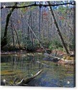 Great Smoky Mountains National Park Acrylic Print