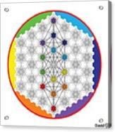 64 Tetra Chakra Activation Grid Acrylic Print