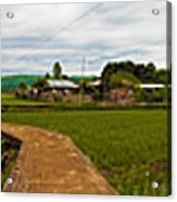 6x1 Philippines Number 123 Rice Fields Panorama Acrylic Print