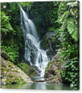Beautiful Waterfall Acrylic Print
