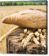 Bread And Wheat Cereal Crops. Acrylic Print by Deyan Georgiev