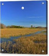 7- Everglades Moon Acrylic Print