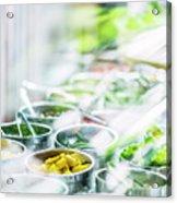 Salad Bar Buffet Fresh Mixed Vegetables Display Acrylic Print