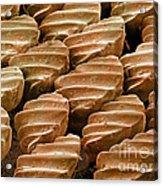 Sandbar Shark Skin, Sem Acrylic Print