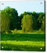 Landscape Nature Art Acrylic Print