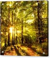 Nature Landscape Paintings Acrylic Print