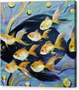 8 Gold Fish Acrylic Print