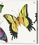 8 Butterflies Acrylic Print