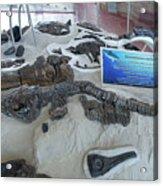 Centro De Investigaciones Paleontologicas Acrylic Print