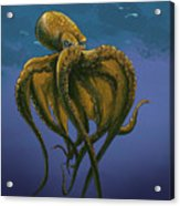 8 Legs Of The Sea Acrylic Print