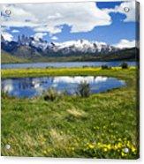 Springtime In Torres Del Paine Acrylic Print