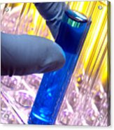 Test Tube In Science Research Lab Acrylic Print
