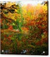 Nature Landscape Lighting Acrylic Print