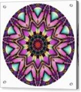 800-04-2015 Talisman Acrylic Print
