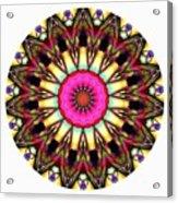 819-04-2015 Talisman Acrylic Print
