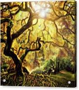 9 Abstract Japanese Maple Tree Acrylic Print