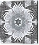 Fern Frost Mandala Acrylic Print