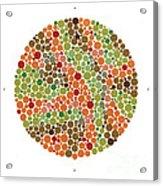 Ishihara Color Blindness Test Acrylic Print