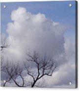 Montana Clouds Acrylic Print